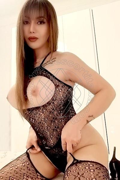 Ruby Trans Asiatica TORINO 3664828897